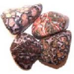 Leopardskin Jasper Tumblestone