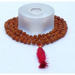 Rudraksh Mala Beads